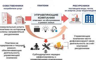Как учредить управляющую компанию