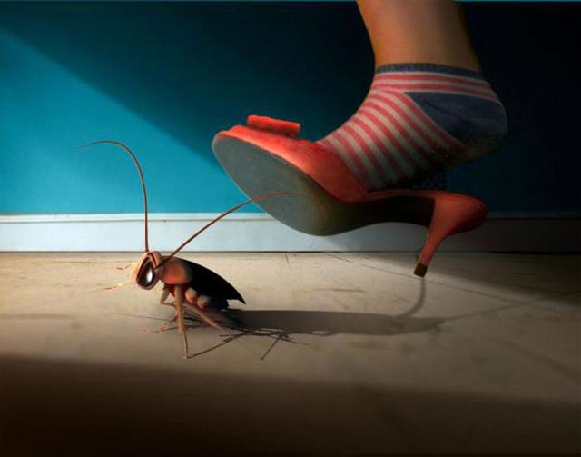 Что делать с тараканами в многоквартирном доме