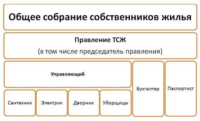 Куда жаловаться на ТСЖ в московской области