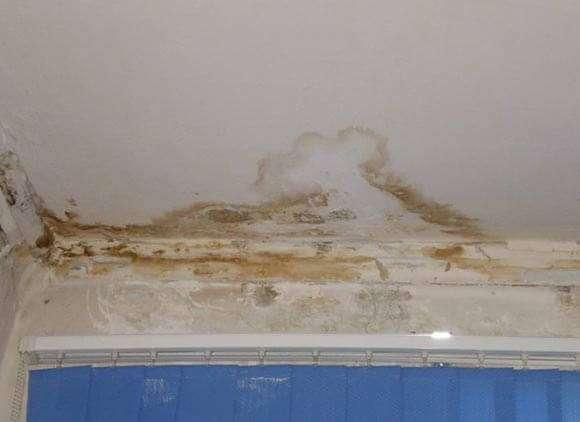 Как написать заявление в ТСЖ на ремонт крыши образец