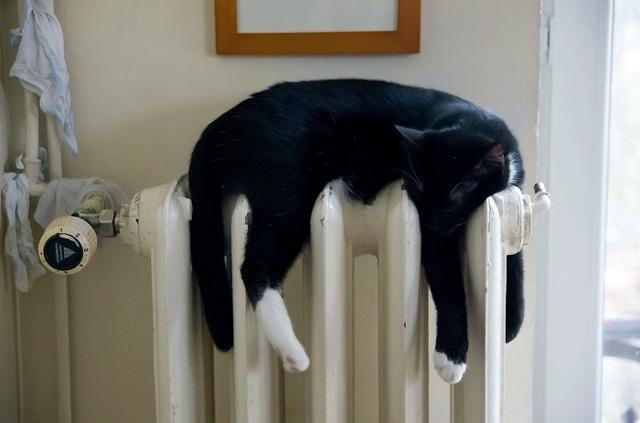 Как написать жалобу в ЖКХ образец если плохое отопление