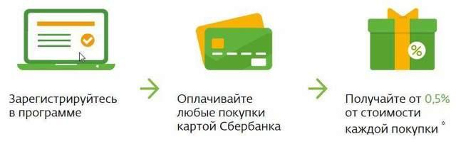 Как получить бонусы спасибо от сбербанка при оплате коммунальных услуг