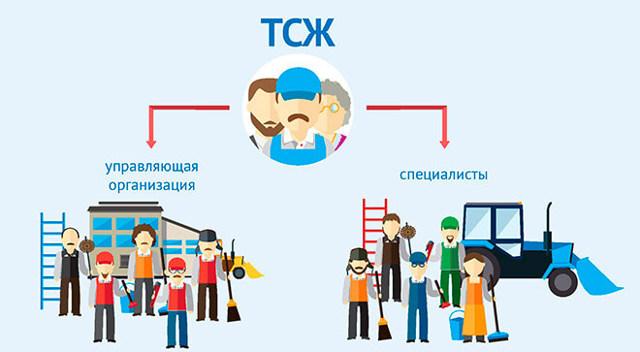 Как организовать ТСЖ в новостройке
