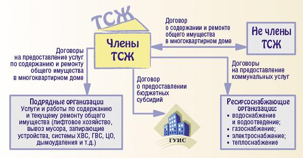 Как расшифровывается ТСЖ в торговых сетях