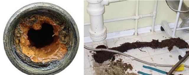 Если забилась канализация в многоквартирном доме куда обращаться